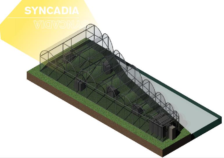 Syncadia