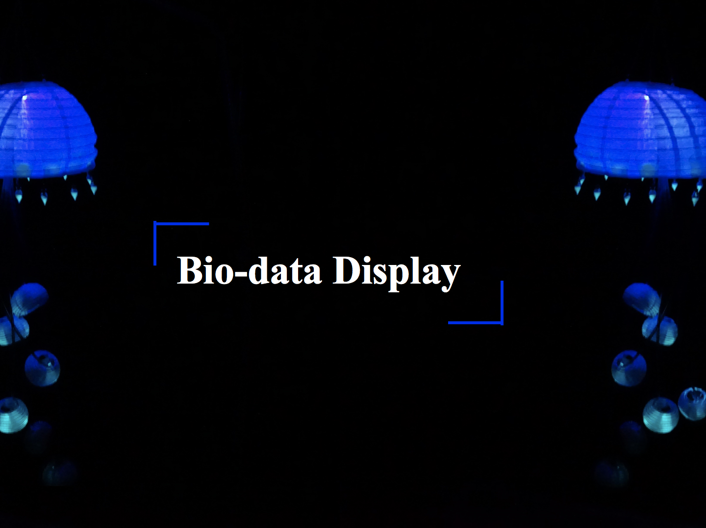 Bio-Data Display