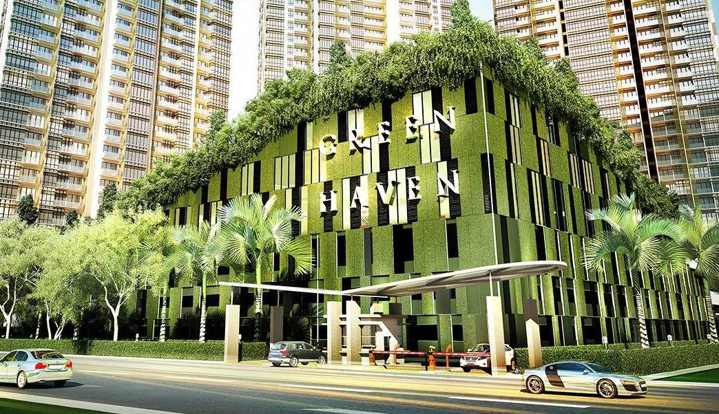 The Tree House: Are Urbanization and Nature Mutually Exclusive?